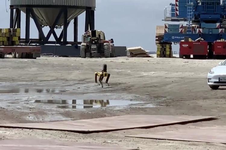 На місці вибуху ракети Starship було помічено робо-собаку Boston Dynamics