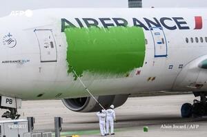 У Парижі екоактивісти розфарбували літак у зелений колір у відповідь на «грінвошінг»