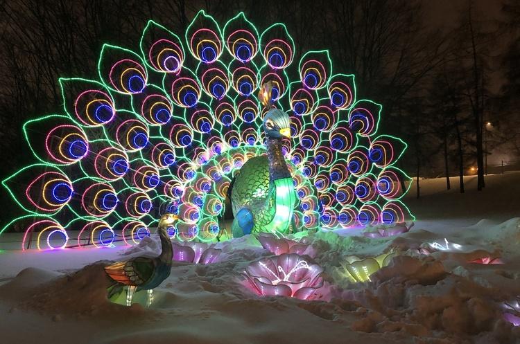 Громадяни пільгових категорій зможуть безкоштовно відвідати Фестиваль гігантських китайських ліхтарів