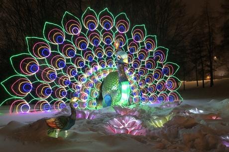 Граждане льготных категорий смогут бесплатно посетить Фестиваль гигантских китайских фонарей