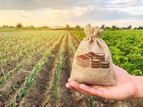 Уряд направить 1,2 млрд грн на здешевлення кредитів для аграріїв