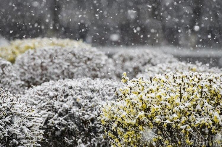 На карантинных выходных ожидается снег с дождем и весеннее солнце