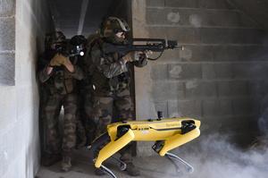 У Франції робо-собаку Boston Dynamics використали для військових навчань