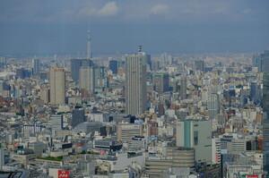 З початку пандемії в Японії збанкрутували понад 1300 компаній