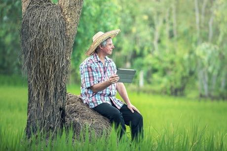Пандемія прогресу: які 5 трендів в AgroTech допомагатимуть сільгоспвиробникам