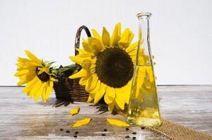 Україна значно наростила експорт соняшникової олії до Китаю
