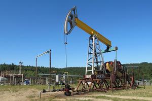 «Нафтогаз» наростила видобуток нафти на об'єктах в Західній пустелі Єгипту на 20%