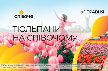 В столичном парке Спивоче расцвело более 700 тысяч тюльпанов