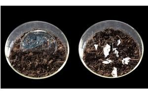 Вчені створили пластик, який повністю розкладається у воді або компостній ямі