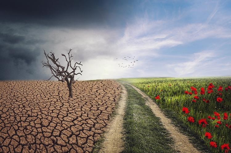 Кліматичний саміт: США пообіцяли вполовину скоротити викиди, ЄС – стати вуглецево-нейтральним