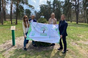 4 мільйони: в Україні встановили рекорд з висадки дерев за 1 добу