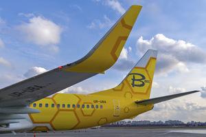 Український лоукостер Bees Airline отримав дозвіл на польоти до Європи