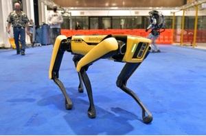Поліція Нью-Йорка «звільнила» робособаку Boston Dynamics після критики в соцмережах