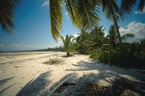 Танзанія посилила умови в'їзду для туристів