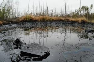 В Республіці Комі через аварію на трубопроводі в грунт і річку потрапило 90 тонн нафти