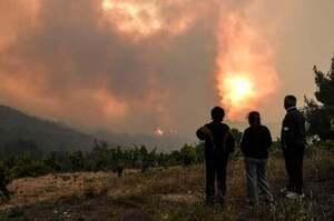 У заповідній зоні біля Афін спалахнула масштабна лісова пожежа