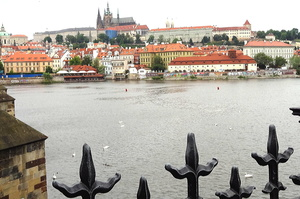 Чехія раніше запланованого повністю відкриє ресторани, бари, нічні клуби та інші заклади