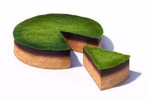 Цінний актив: як пропонують вдосконалити застосування аграрної розписки