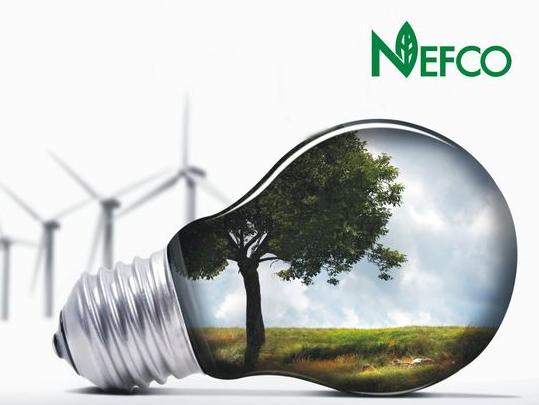 NEFCO зупиняє інвестиції в «зелену» енергетику України
