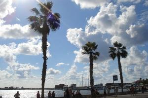 Більш як половина «золотих паспортів» Кіпру була видана незаконно