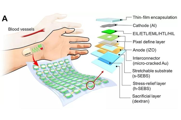 Samsung розробила еластичний дисплей, який кріпиться на зап'ясток і вимірює ритм серця