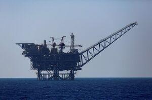 «Нафтогаз» отримав чотири спецдозволи на користування надрами родовища «Дельфін»