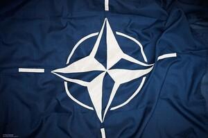 Україна отримає членство в НАТО через ПДЧ