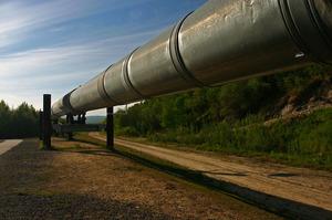Україна скоротила імпорт нафти на майже 30% у січні-травні