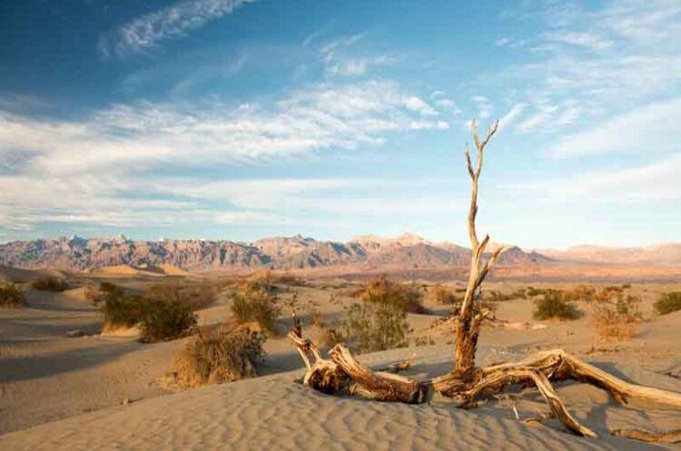 Техас і Каліфорнію накрила «апокаліптична» спека, електромережі на межі колапсу