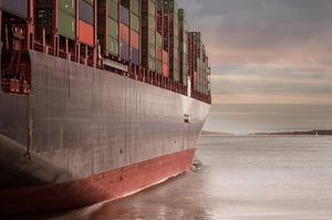 Контейнерна криза триває: альянс великих перевізників не пускатиме свої судна в порт Роттердам