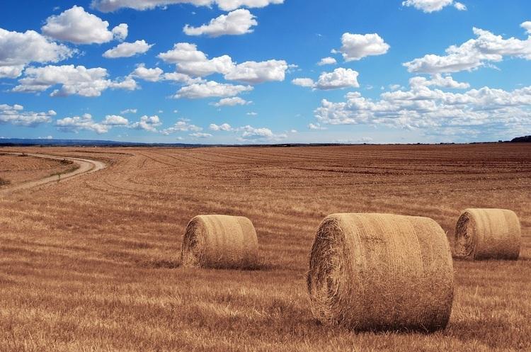 Європейських фермерів змусять брати участь у екологічних програмах