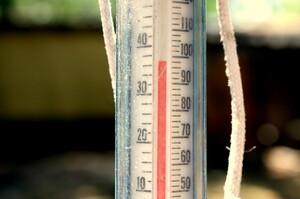 У США і Канаді різко збільшилася кількість смертей через небувалу спеку