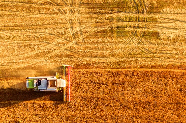 Відкриття ринку землі: за перші шість днів українці здійснили 322 земельні транзакції