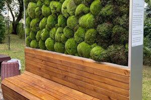В сквере Небесной сотни установили экомодуль, который способен заменить 275 деревьев