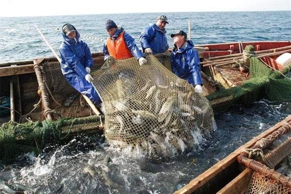 Китай, Япония, ЕС – тройка лидеров по субсидиям вредного рыболовства