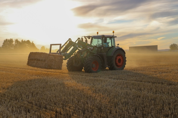 Фермери зможуть отримати державні портфельні гарантії для купівлі сільськогосподарської землі
