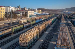 Розслідування Earthsight: російський політик Євген Бакур незаконно вирубував ліс і продавав його IKEA
