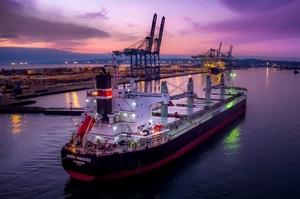 Данська Norden виграла справу проти українського морського агента «Старк Шиппінг»