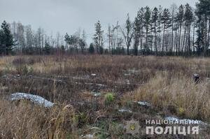 Нацполіція викрила посадовців держпідприємств у незаконній вирубці лісу