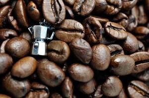 Холод і сніг в Бразилії: під загрозою опинились кава, цукрова тростина і апельсини