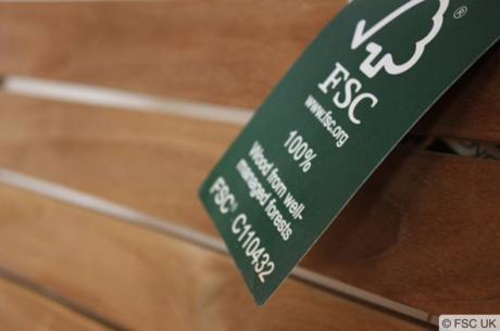 Сознательное потребления: зачем нужна FSС-сертификация лесов