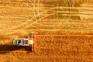 Ринок землі: кількість угод перевищила сім тисяч