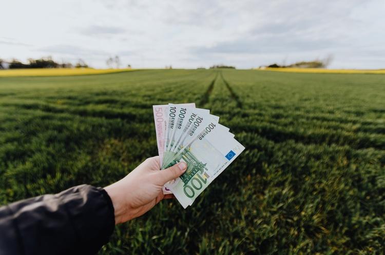 Українці продали 24 000 га сільськогосподарської землі за майже два місяці роботи ринку