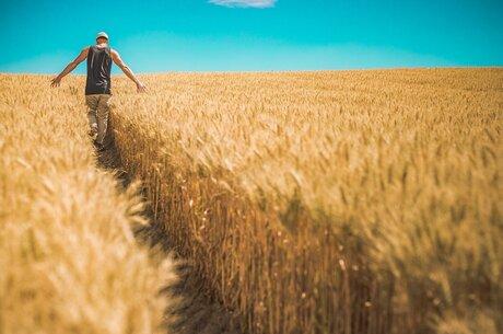 Можливості гектару: про актуальний інвестиційний потенціал землі