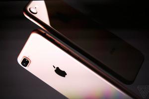 В США вимагають заборонити ввезення «айфонів» з Китаю через використання підневільної праці