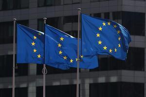 Євросоюз занепокоєний через зловживання безвізом низкою країн, зокрема Україною – ЗМІ