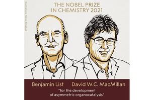 Нобелівську премію з хімії присудили за інструмент для створення молекул