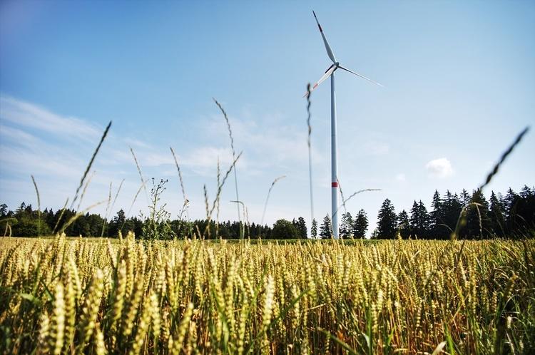 Зелена пастка: чому українцям доведеться додатково платити за наявність «зеленої» енергії