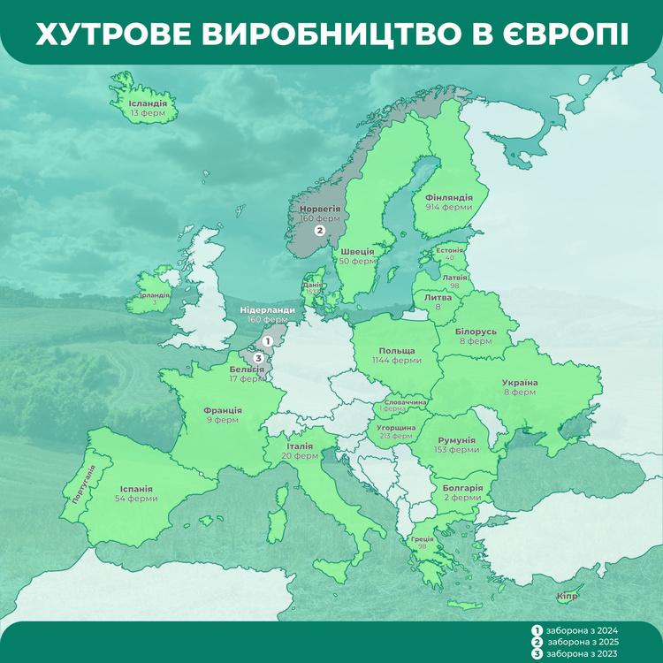 Fur-free Украины: все «за» и «против» меховых ферм